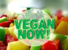 vegan NOW!